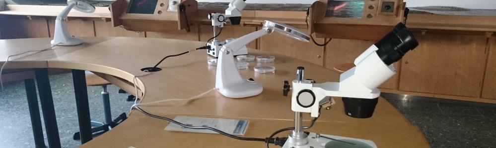 slider_gsm_innen_mikroskope