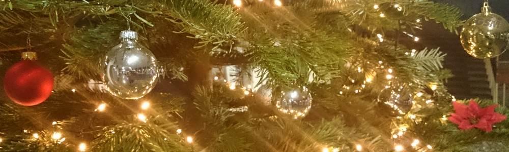 slider_gsm_innen_eingangshallew_christbaum3