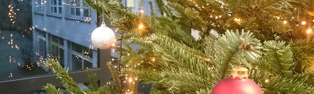 slider_gsm_innen_eingangshallew_christbaum4