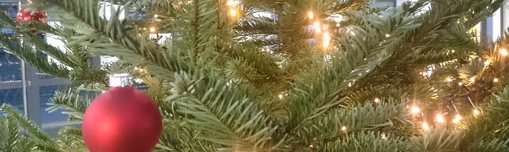 slider_gsm_innen_eingangshallew_christbaum5