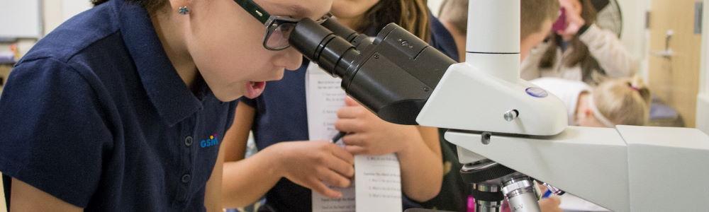 slider_gsm_nw_mikroskopieren